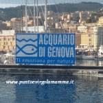 Acquario di Genova: un mondo magico per i bambini