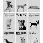 Las tipografías y las razas de perros