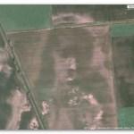 Aparece la cara de Jesús en una imagen de Google Maps