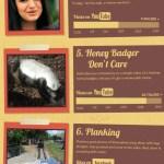 Los memes más populares del 2011 [Infografía]