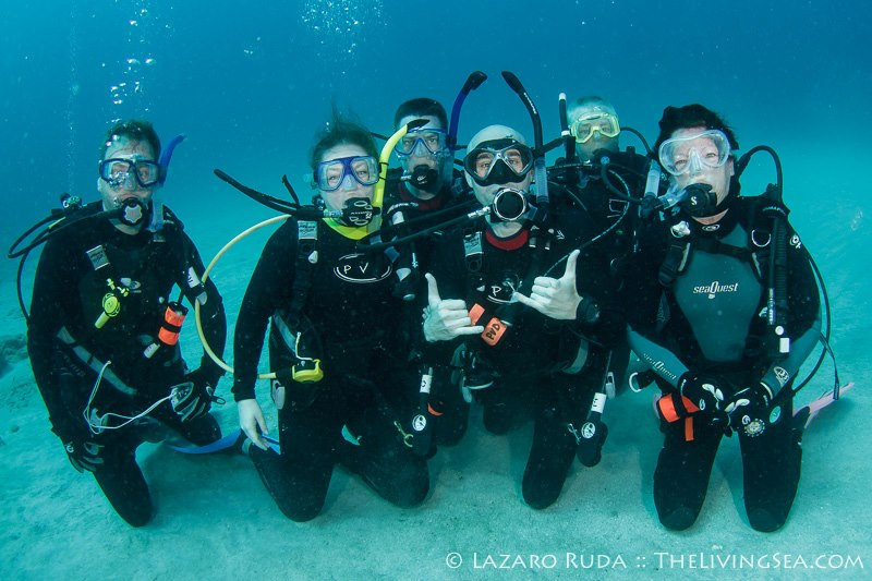 Discover Florida Scuba Diving Pura Vida Divers : Discover South ...