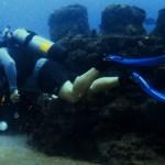 Bill diving