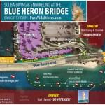 Blue Heron Bridge Night Dive: April 6th