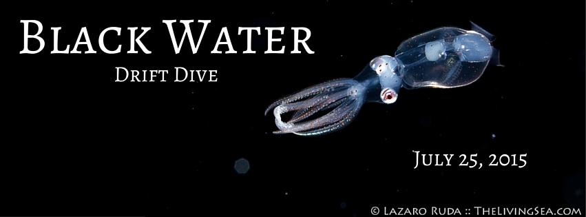Black Water Drift Dive