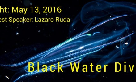 2016 May Social Night: Black Water Drift Dive Presentation
