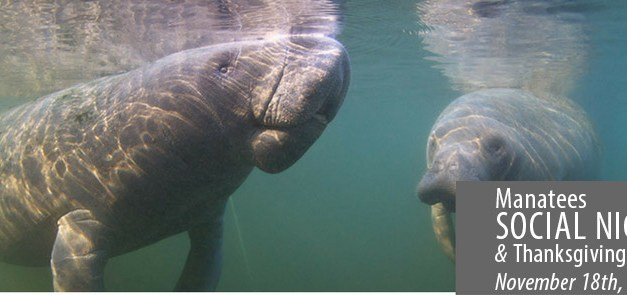 2016 Social Night: Manatee Presentation & Thanksgiving Feast