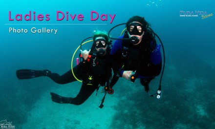 LADIES DIVE DAY PHOTO GALLERY