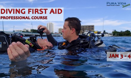 DIVING FIRST AID: PROFESSIONAL COURSE