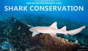 Shark Specialty 2018