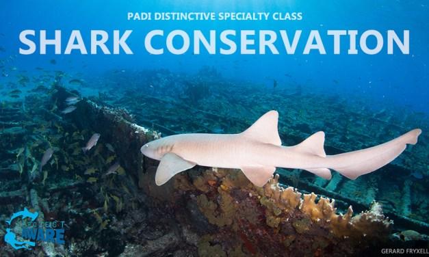 FEB 10 & 11: SHARK CONSERVATION CLASS