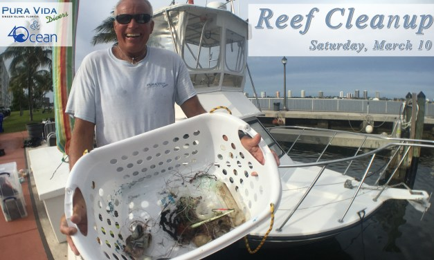 MARCH 10: REEF CLEANUP