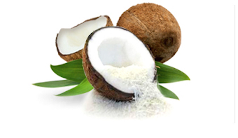 Desiccated Coconut Fine