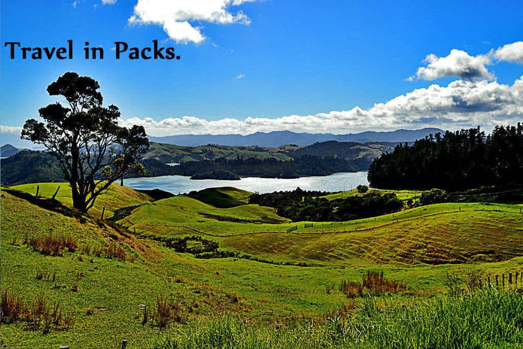 real-NZ-packs