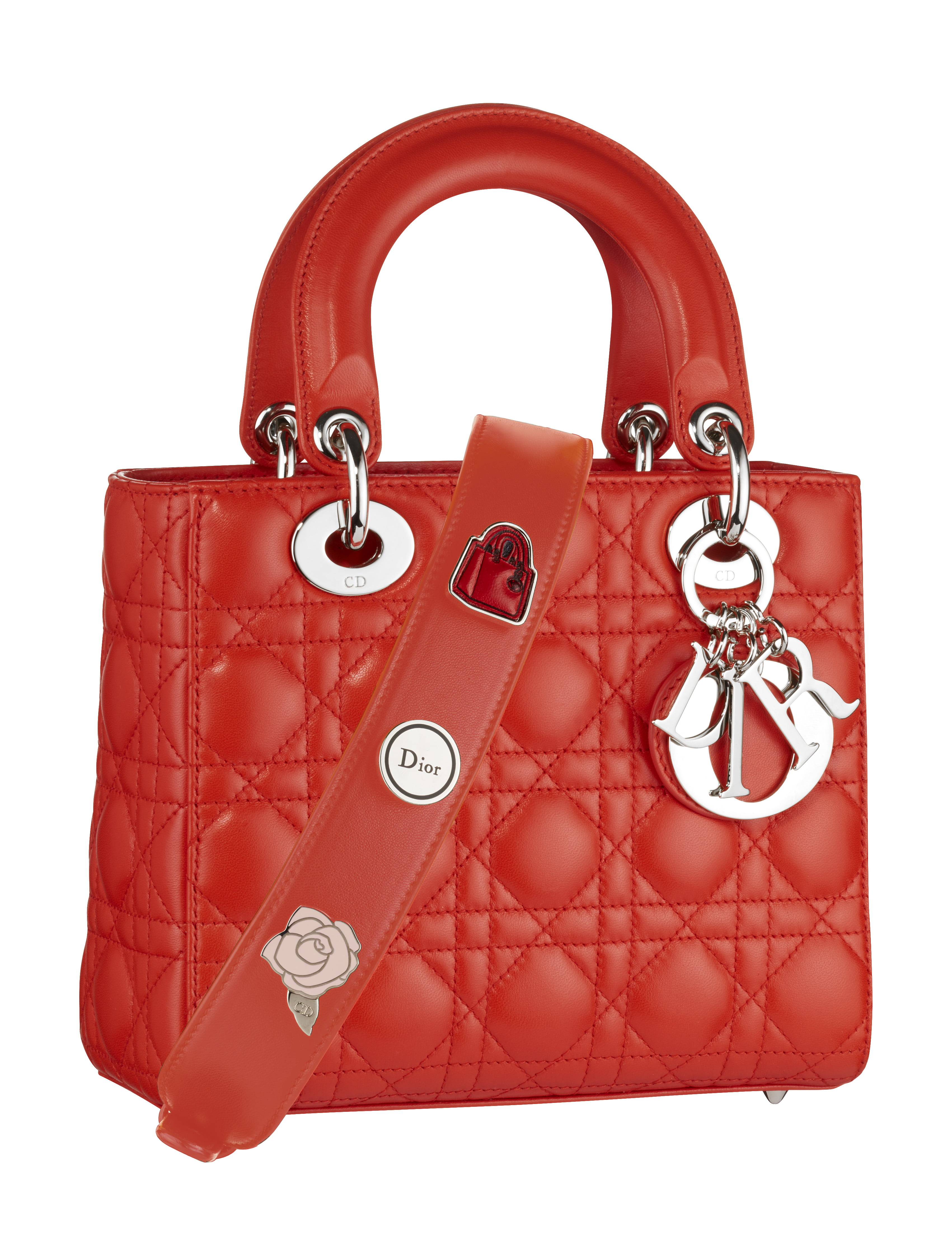 Lady Dior Small Pins - RED