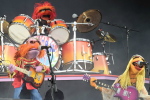 The Muppets Outside Lands
