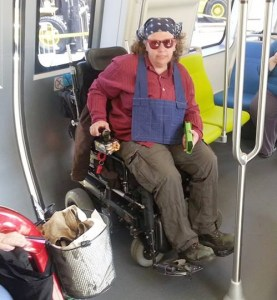 Wheelchair user & pole