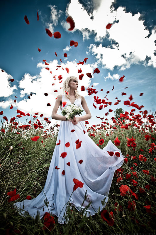 Bride and Poppies