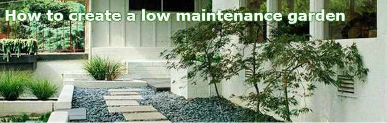 Low maintenance garden design tips and ideas for for Low maintenance garden design