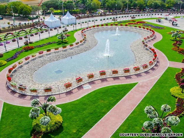 صور : حديقه الزهور في دبي – اكبر حديقة
