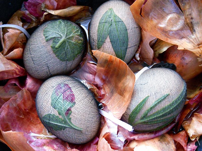 Queen Lila Dye Eggs with onion peelings tutorial (12)