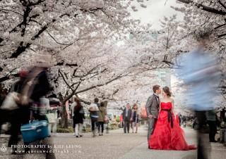 cn-hk-hong-kong-professional-photographer-pre-wedding-oversea-海外-婚紗婚禮攝影-0011