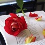 مراجعة حاسب آلي للصف الاول الاعدادي ترم أول 2011