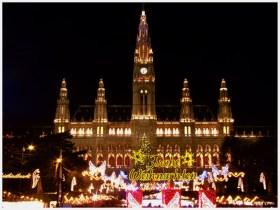 natale-vienna-austria-fotografie (6)