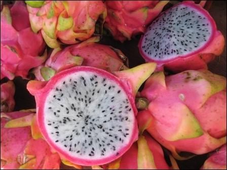 Appelé aussi fruit du dragon, il est peu calorique et se cultive dans toute l'Asie du sud-est.
