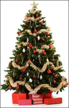 Mon premier lui appartient. Les gens aiment bien la mie de mon deuxième. Mon tout est l'arbre de Noël.