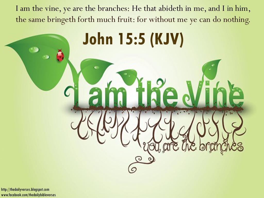kjv bible quotes quotesgram