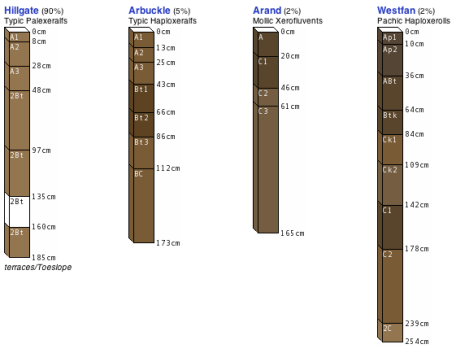 Soil Profiles in Color