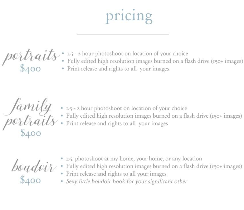 Portrait Pricing 2017