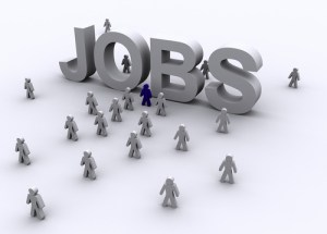 job_search1-2