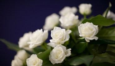 Condolences-flowers-Chng