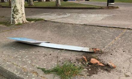 De terror: un automovilista perdió la cabeza y causó destrozos en el centro