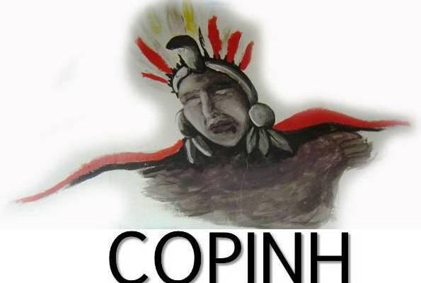 logocopinh