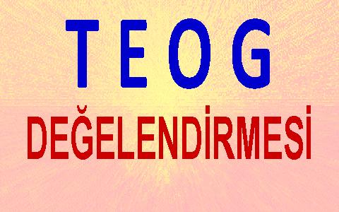 TEOG 2015