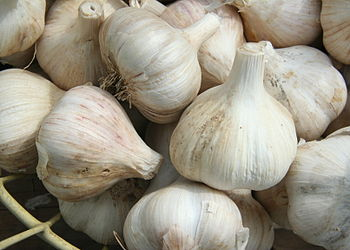 English: A basket of garlic (allium sativum) o...