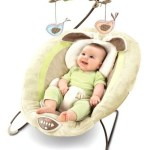 Amazon: *HOT* Highly Rated Fisher-Price My Little Snugabunny Bouncer $44.79 + FREE Shipping (Reg. $64.99)!