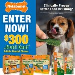 Win $300 Worth of Nutri Dent Edible Dental Chews
