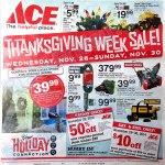 2014 Ace Hardware Black Friday Ad! (LEAKED)