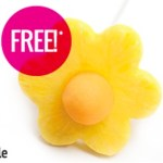 FREE Pineapple Edible Pop at Edible Arrangements!