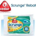 FREE O-Cedar Scrub Singles