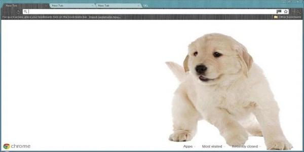 Puppy Theme