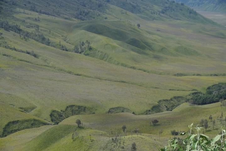 Bukit Telletubies (pic taken by Mas @papanpelangi)