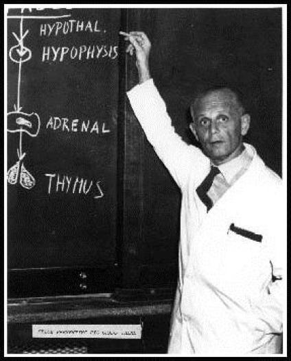 H. Selye nel 1946 (da internet)