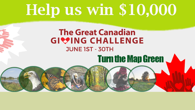 2016 05 25_Great Canadian Giving Challenge1_feature roll