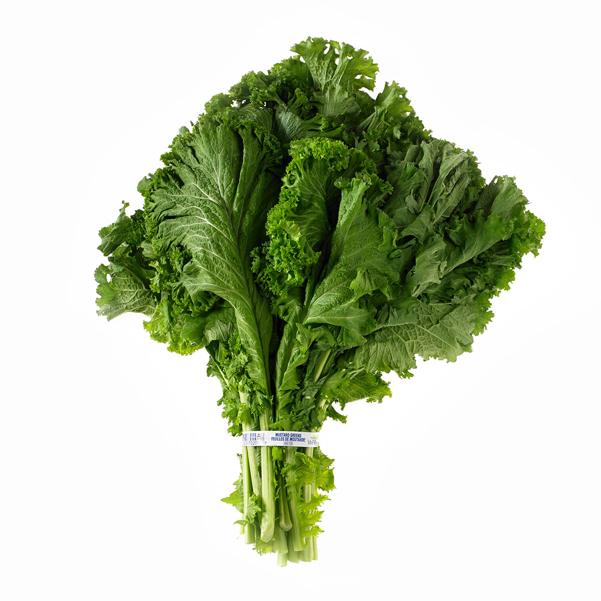 Kale With Apples and Mustard forecast