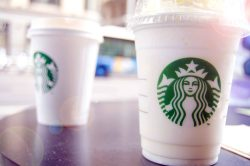 Small Of How Much Do Starbucks Baristas Make