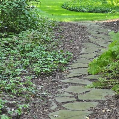 lush backyard sanctuary r d landscape